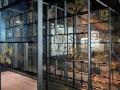 Essen –  Zeche Zollverein: Ruhr Museum: Pflanzen der Region