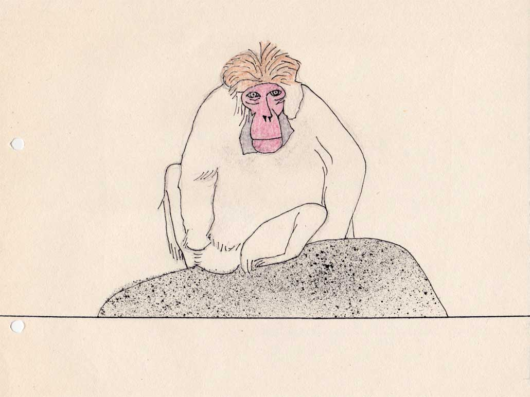 Affe - Was ist Glück?