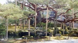 DSCN3297-Japanreise