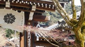 DSCN3473-Japanreise